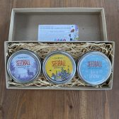 seedball gift set